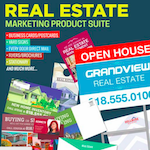 Pro Digital Strategies Real Estate Print Marketing Promotion Logo