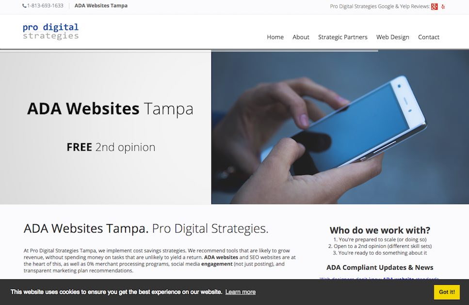 Pro Digital Strategies Homepage screenshot of person holding phone and navigation menu